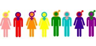 seksuele-diversiteit-poppetjes